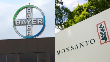 Bayer veut racheter Monsanto